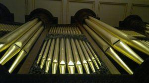 SGHS main organ