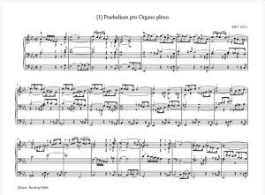 Bach 6.JPG