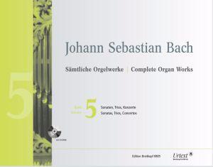 Bash 5.JPG