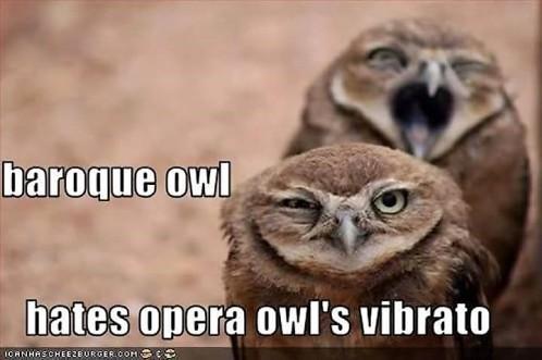 Baroque owl.jpg